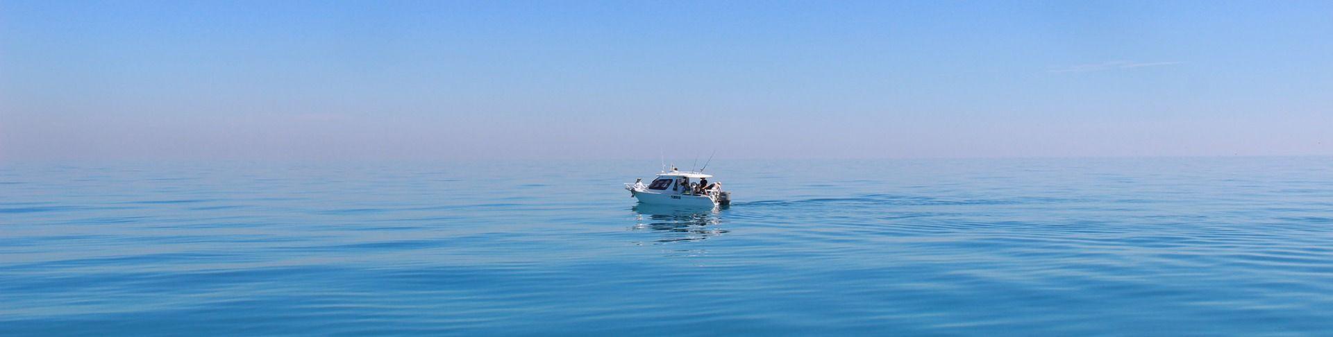 /online-boatdriver-sbf-see-d